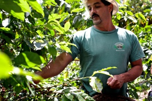 Oldemar Salazar gives a tour of his coffee farm, which is a part of a home he shares with his family. Most of his coffee sales come from tours. Sally French/MIssouri School of Journalism