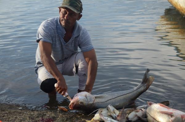 A man cleans a fish.