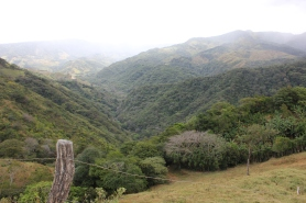 The Bellbird Biological Corridor extends from the mountains of Monteverde down to the mangroves of the Gulf of Nicoya. Over 16,000 people live in the area.