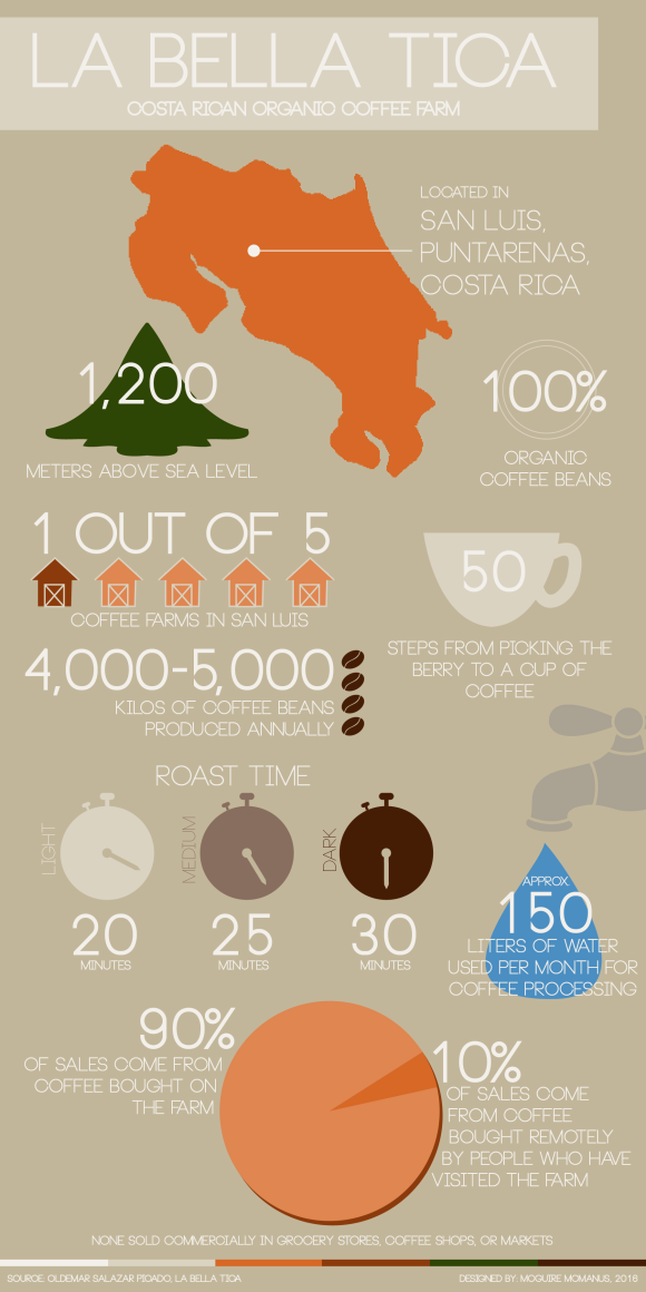 Coffee Infographic-01